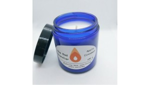 Apple Cinnamon Soy Candle is SOLD OUT!